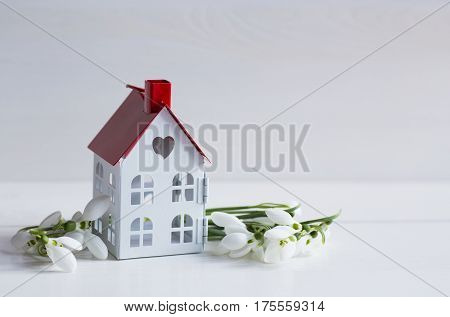 Beautiful White Snowdrops With Cute Toy House On White Wooden Background
