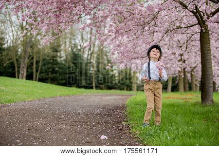 Beautiful Young Preschool Boy, Standing In A Cherry Blossom Garden, Holding Flower, Vintage Outfit