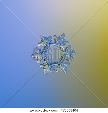 Macro photo of real snowflake: medium size snow crystal of stellar plate type, around 3 millimeters from tip to tip, with big, flat and empty central hexagon and relief, glossy arms with ridges. Snowflake glitters on smooth blue - yellow gradient backgrou