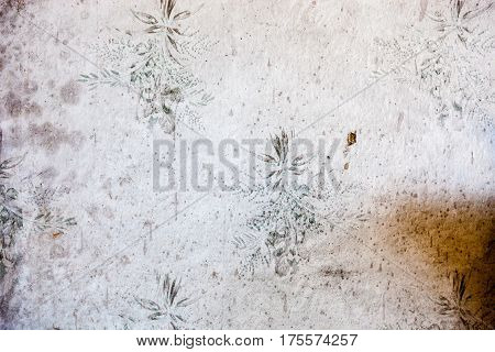 Old dingy and dirty wallpaper with floral pattern.