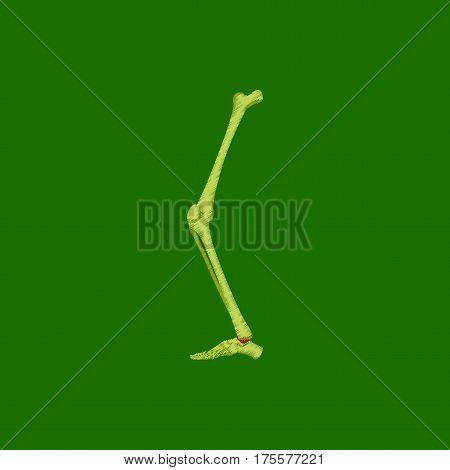 flat shading style icon on green background leg bone