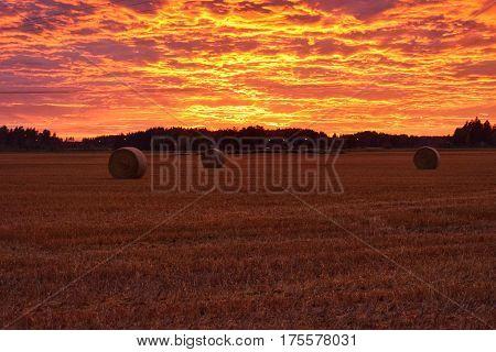 Hay rolls under beautiful burning sky sunset.