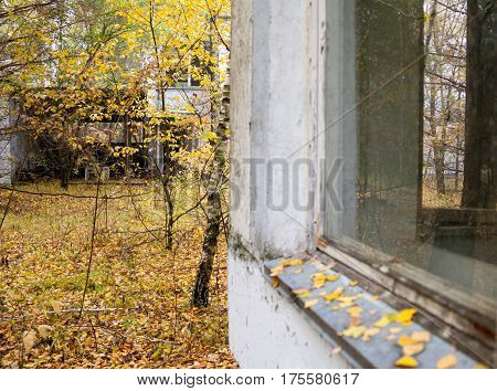 Pripyat. Ghost town in Chernobyl Exclusion Zone. Abandoned houses.