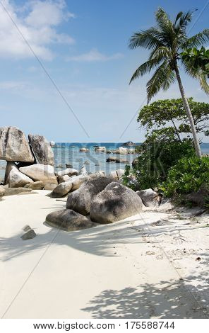 Natural rock formation in the sea and on a white sand beach with a palm tree in Belitung Island in the afternoon Indonesia.