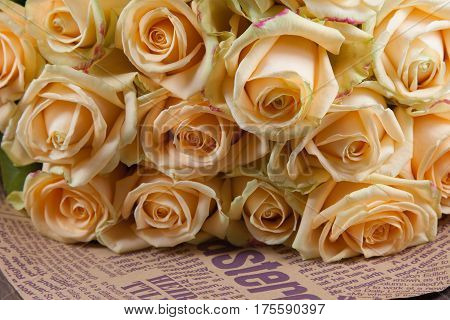 Many natural beatiful beige roses background, sideview