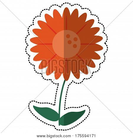 cartoon gerbera flower natural vector illustration eps 10