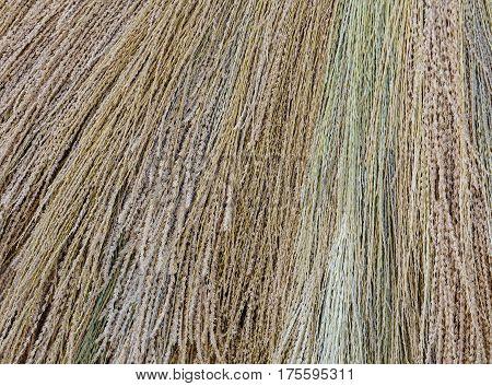 Dried Grass Texture