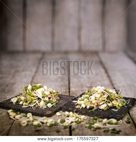 mung bean sprouts in front of a wooden rustic background with copyspace