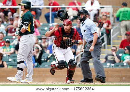 SCOTTSDALE, AZ-MAR 6: Arizona Diamondbacks catcher Miguel Montero scrambles for a loose ball against Oakland Athletics at Salt River Fields at Talking Stick on March 6, 2014 in Scottsdale, Arizona.