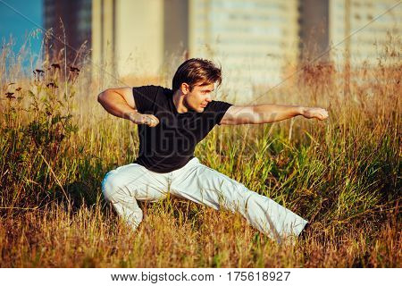 Young athletic man martial art training outdoors at grass field
