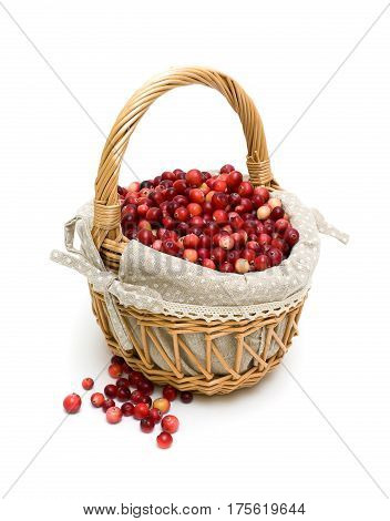 wicker basket of ripe cranberries isolated on a white background. vertical photo.