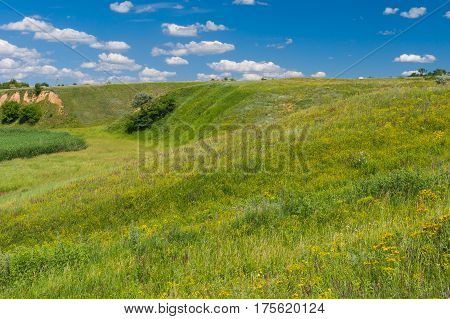 June landscape with hills overgrown with wild grasses in rural Ukrainian area