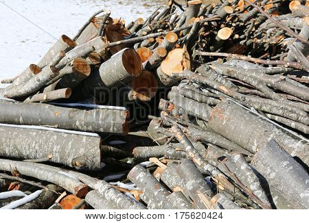 pieces of wood in the woodshed outdoors with snow