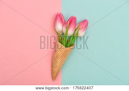 Tulip flowers in ice cream waffle cone on hipster colors background. Styled flat lay. Minimal concept