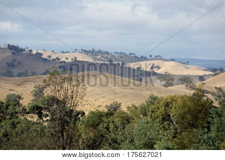 View of the Countryside, Victoria, Australia