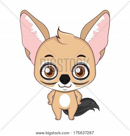 Cute stylized cartoon jackal illustration ( for fun educational purposes, illustrations etc. )