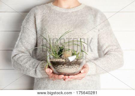Women hands holding mini succulent garden in glass terrarium