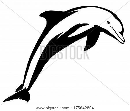 black and white linear draw dolphin illustration