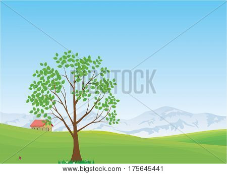 Spring or summer landscape - Illustration Field, Meadow, Season, Springtime, Summer