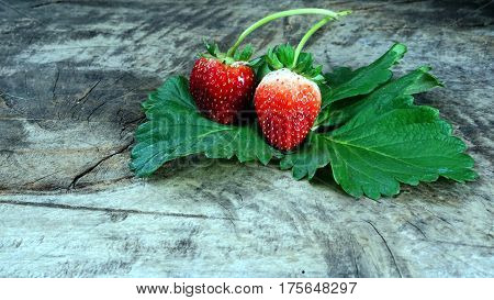 Strawberry on a wood table. Strawberry flavor and fragrance are popular, Strawberry are used widely in a variety of manufacturing, including beverages, foods, confections, perfumes and cosmetics.