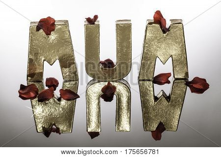 Mum in monolithic simulated gold letters and red rose petals. Metallic word with reflection.