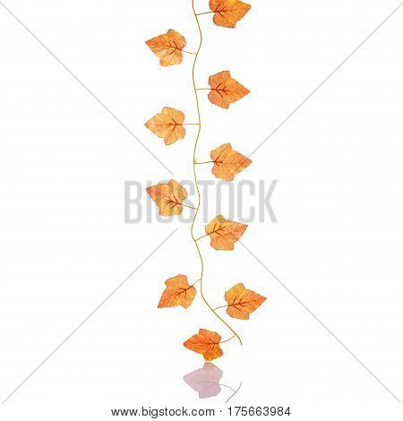 Artificial Plastic Maple Leaf. Studio Shot Isolated On White