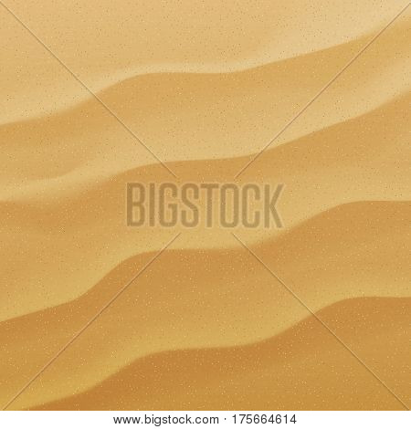 Vector sand background. Texture of sand and dunes