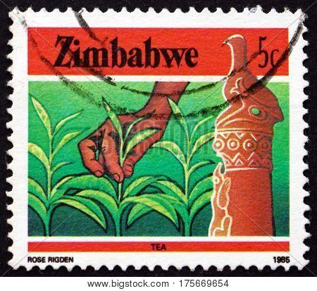 ZIMBABWE - CIRCA 1985: a stamp printed in Zimbabwe shows Zimbabwe bird and tea agriculture circa 1985