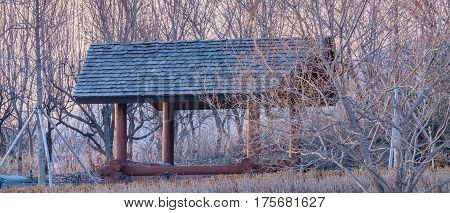 Covered pavilion in natural woodland park at sunset with soft sunlit sky in the background behind the treeline