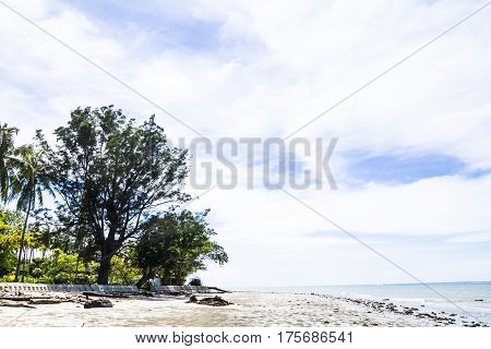 Secluded beach during the daytime with clear sky