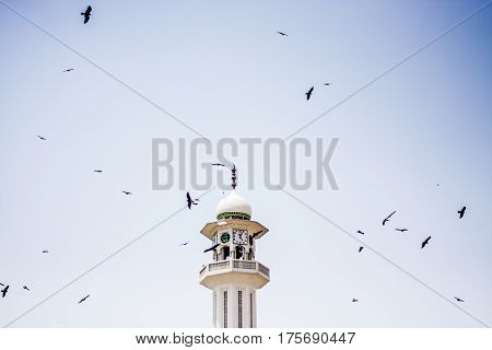 Mosque With Birds