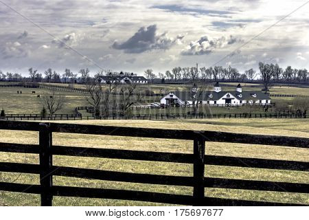 landscape of horse pastures and barns outside of Lexington Kentucky