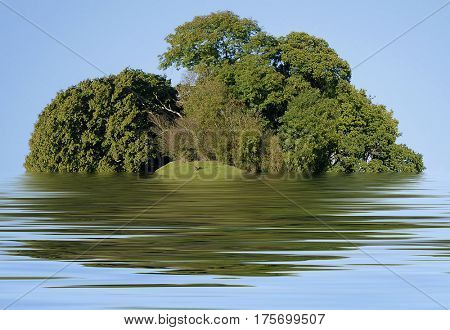 Simulated isolated island with trees and water reflections