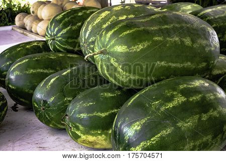Watermelons on display at a produce stand