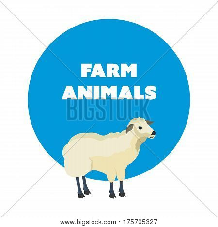 Farm animals concept. Cute funny white sheep isolated on white background. Cartoon vector illustration isolated