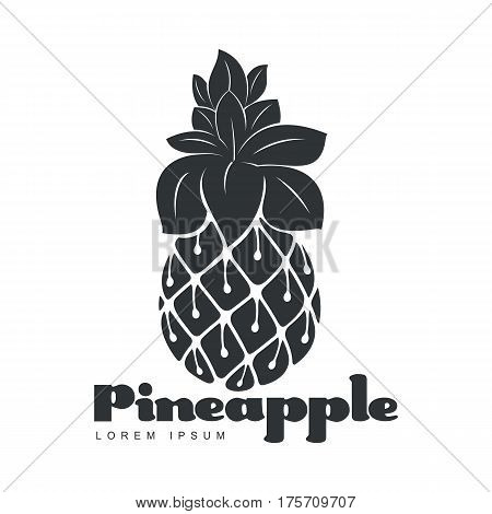 Black and white assymmetric graphic pineapple logo template, vector illustration isolated on white background. Stylized graphic pineapple logotype, logo design
