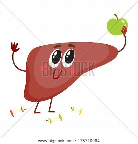Cute and funny, smiling human liver character holding apple, healthy eating concept, cartoon vector illustration isolated on white background. Healthy human liver character, health care concept