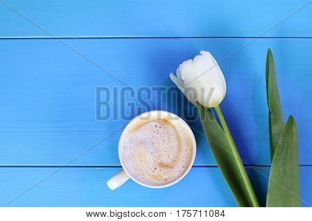 Frothy cappuccino with tulip top view / coffee break with a delicate aroma