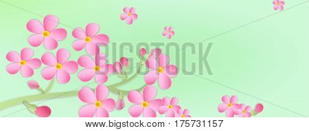 Banner With A Branch Of Cherry Blossoms With Paper Cut. Paper Art Style.flowers On A Green Backgroun