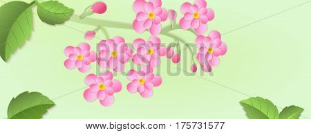 Banner With A Branch Of Cherry Blossoms With Paper Cut. Paper Art Style.leaves And Flowers On A Gree