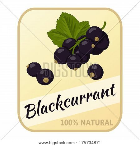 Vintage label with blackcurrant isolated on white background in simple cartoon style. Vector illustration. Berries Collection.