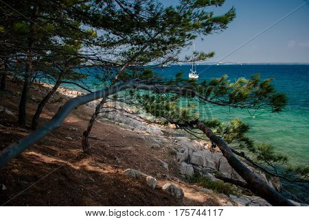 photo of Vrgada Island in Dalmatia Croatia