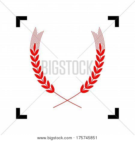 Wheat sign illustration. Spike. Spica. Vector. Red icon inside black focus corners on white background. Isolated.