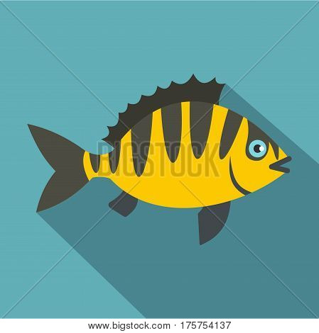 Perch fish icon. Flat illustration of perch fish vector icon for web isolated on baby blue background