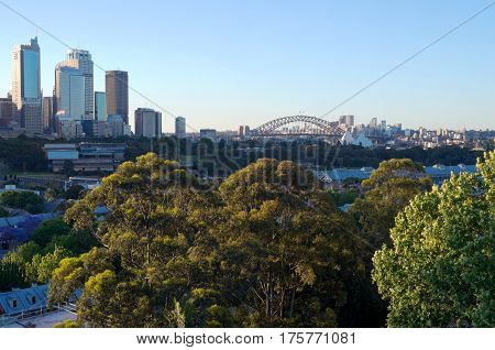 city skyline with buildings landmarks downtown harbor and trees of sydney in new south wales australia