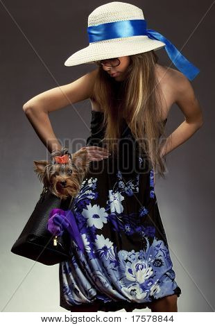 Shot of young glamor woman with Yorkshire Terrier dog in her bag poster