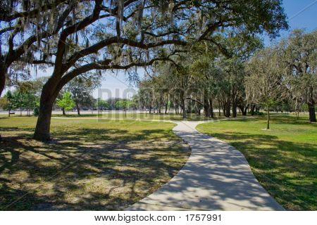 Park Path