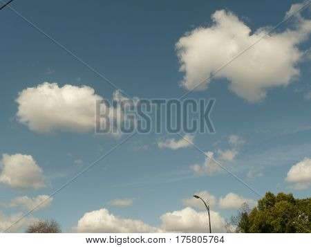 on a windy day in the suburbs of San Jose fluffy white clouds breeze by against a blue sky