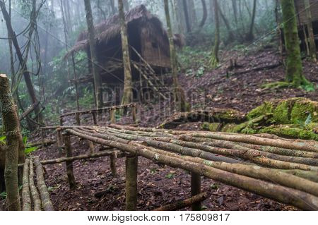Orang Asli Malaysian aborigine village in a jungle near Cameron Highlands, Malaysia