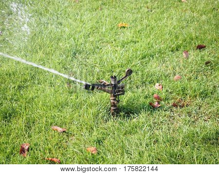 Automatic sprinkler watering the grass in the garden